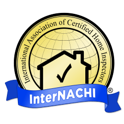 home inspectors richmond va